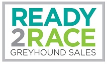 2019 Ready 2 Race auction prices