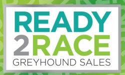 2019 Ready 2 Race final fields