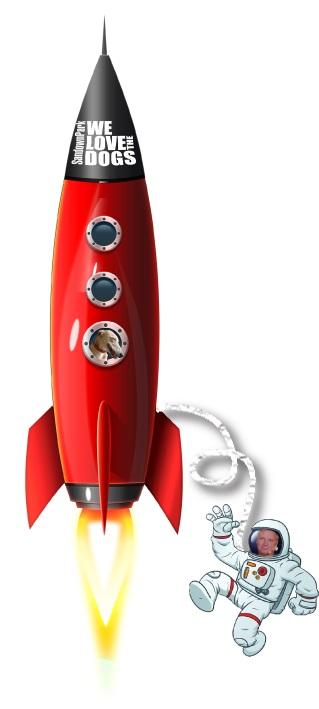 rocketx