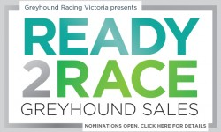 Ready 2 Race Finals – fields now available