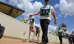2018 Ready 2 Race series underway at Bendigo