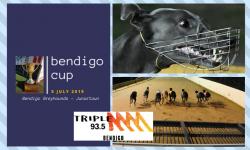 2019 Bendigo Cup