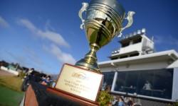 Battlers to share Bendigo Cup limelight