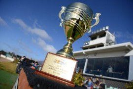 Battlers to share Bendigo Cup limelight
