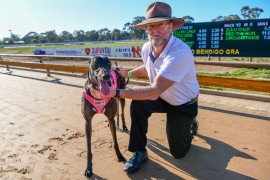 Bendigo Cup heats delivered on promise