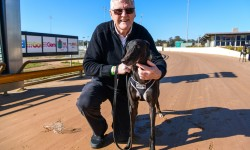 Midnight Monarch Scratched from Bendigo Cup