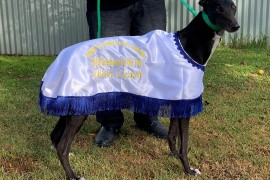 2019 BGRA Greyhound of The Year – SHORT LEASH
