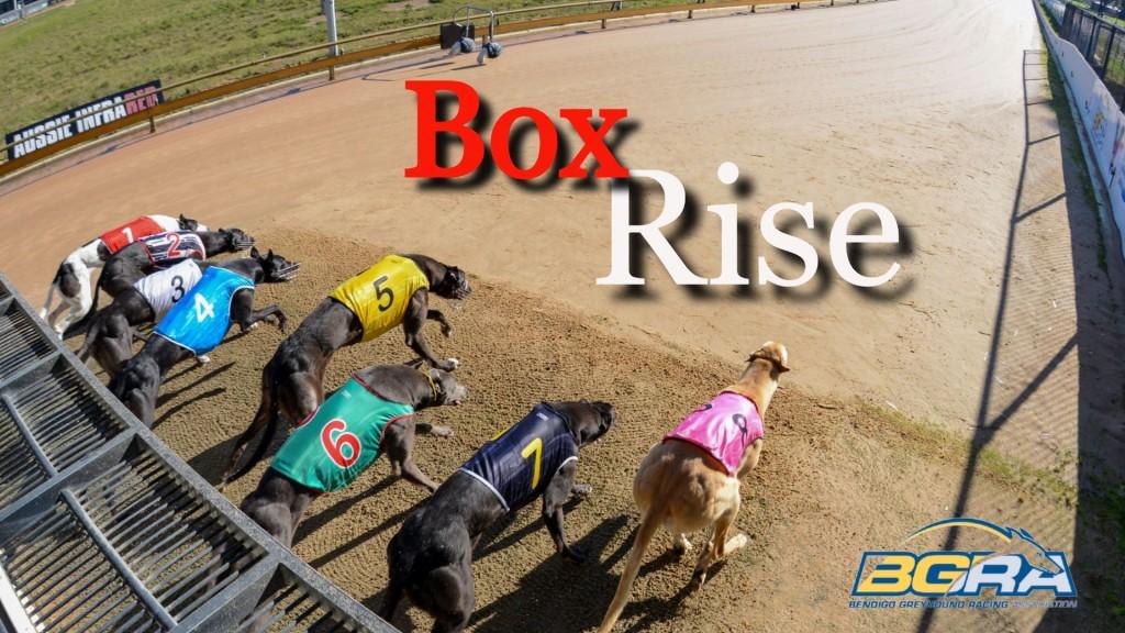 Box Rise logo