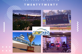 2020 BGRA Year in Review