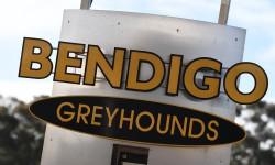 Bendigo's 'golden gang!