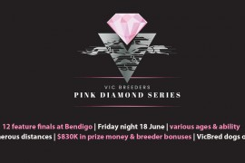 Preview of the inaugural Pink Diamond finals night