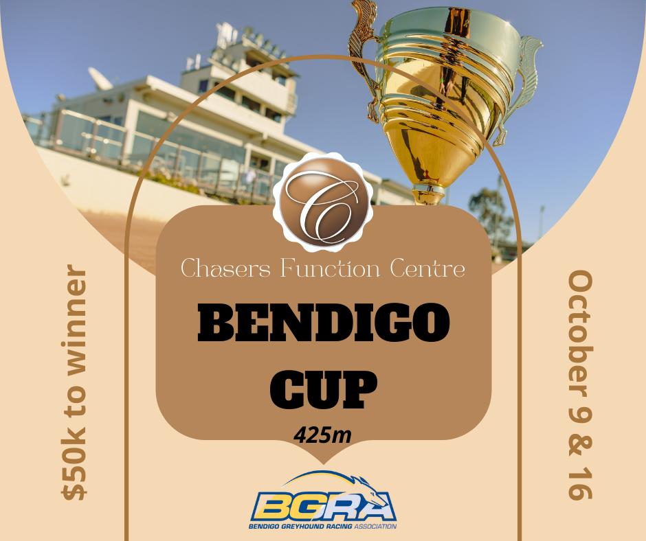 Bendigo Cup 2021