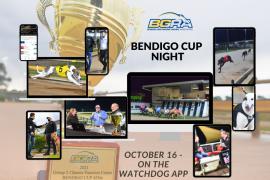 Bendigo Cup highlights sensational final meeting of BGRAs Spring carnival