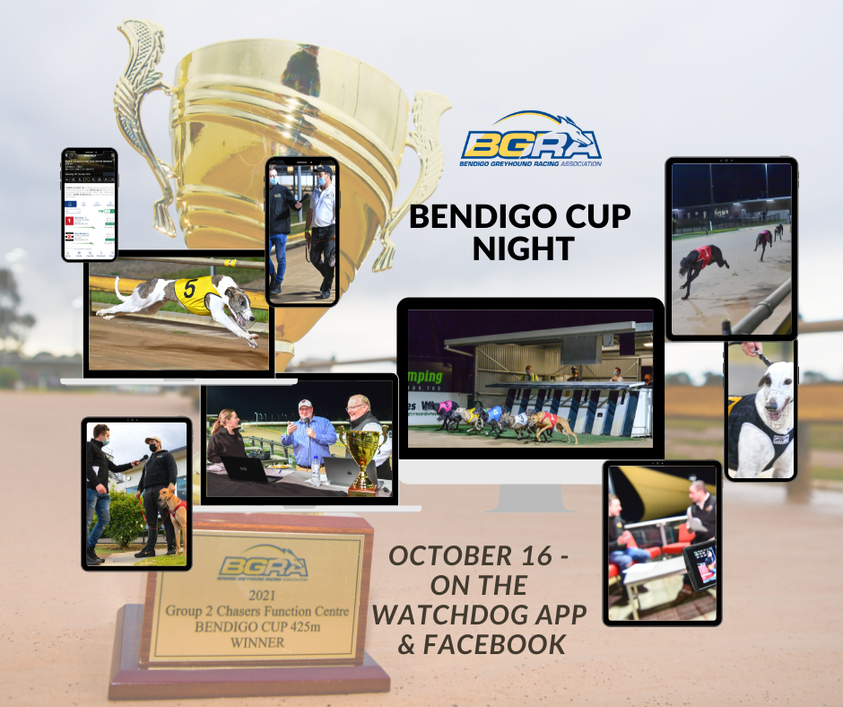 _Cup night coverage post